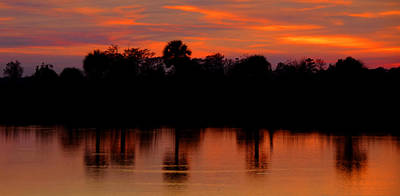 Photograph - Big Cypress Sunset by David Lee Thompson