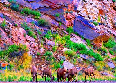 Art Print featuring the photograph Bighorn Grazing Convention by Ann Johndro-Collins