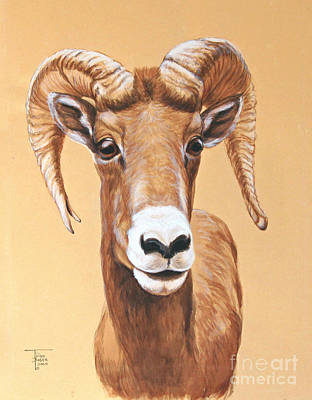 Painting - Bighorn Ram by Art By - Ti   Tolpo Bader