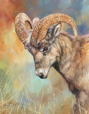 Mountain Painting - Bighorn Sheep by David Stribbling