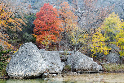 Bigtooth Maple And Rocks Fall Foliage Lost Maples Texas Hill Country Print by Silvio Ligutti