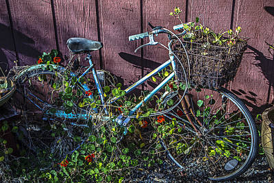 Handlebar Photograph - Bike In The Vines by Garry Gay