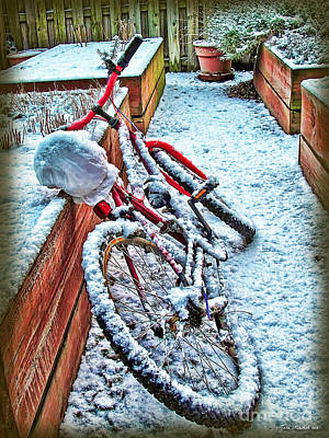 Photograph - Bike In Winter by Joan  Minchak