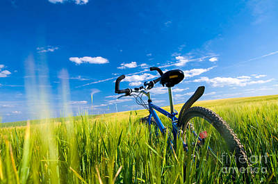 Pedal Photograph - Bike On The Field by Michal Bednarek