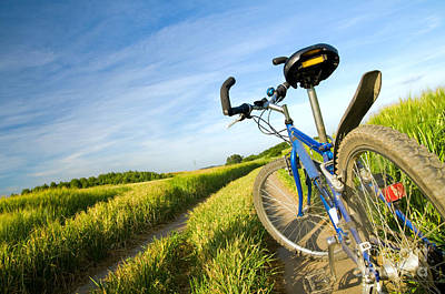Outside Photograph - Bike On The Summer Field by Michal Bednarek