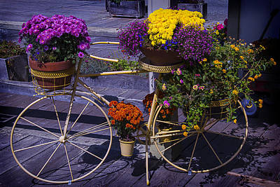 Planter Wall Art - Photograph - Bike Planter by Garry Gay