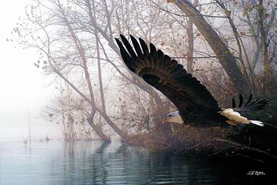 Wildlife Mixed Media - Bilbow's Eagle by Bill Stephens