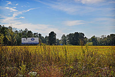 Photograph - Billboards Over A Bean Field by Linda Brown