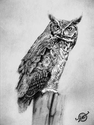 Great Horned Owl Drawing - Bill's Great Horned Owl by Brian Wylie