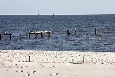 Mississippi Photograph - Biloxi Beach by Carol Groenen