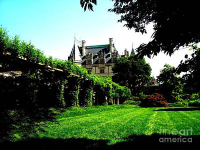 Photograph - Biltmore Distance by Darrin Diaz