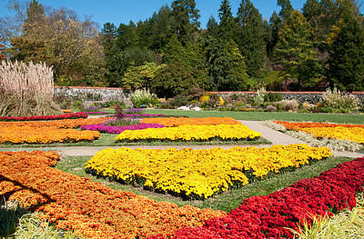 Biltmore Gardens  Art Print by Lynn Bauer