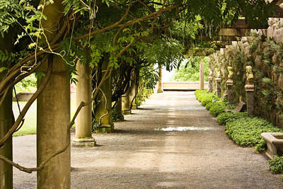 Art Print featuring the photograph Biltmore Pergola by Tammy Schneider