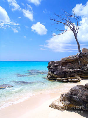 Bimini Beach Art Print by Carey Chen
