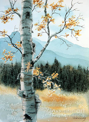 Painting - Paper Birch by Frank Townsley