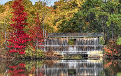 Photograph - Birch Grove Bridge by Greg Vizzi