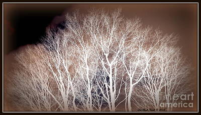 Photograph - Birch-like N Browns by Deb Badt-Covell