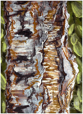 Painting - Birch Peel by Heather  Hiland