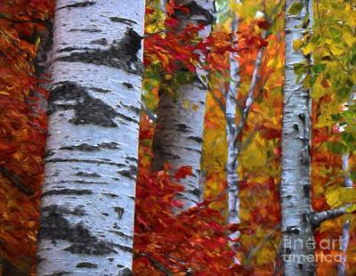 Photograph - Birch Stand Autumn by Henry Kowalski