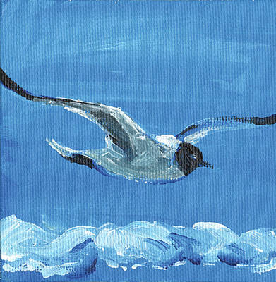 Sea Birds Painting - Bird by Anne Seay