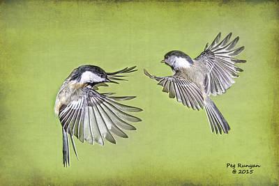 Photograph - Bird Ballet by Peg Runyan