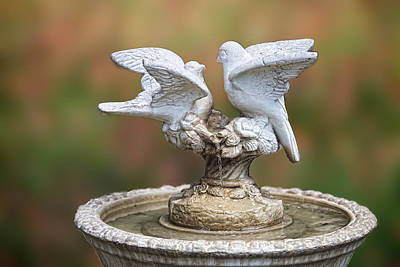 Bird Bath Original