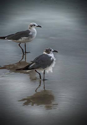 Photograph - Bird Buddies by Eric Miller