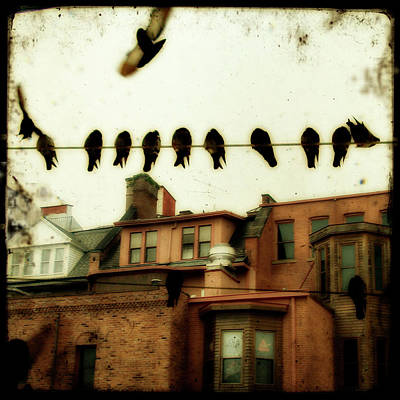 Urban Art Photograph - Bird Cityscape by Gothicrow Images