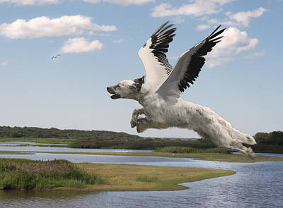 Digital Art - Bird Dog by Rick Mosher