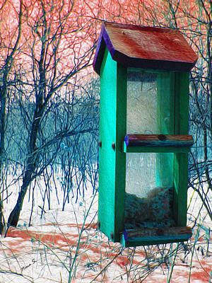Photograph - Bird Feeder In Winter by Nina Silver