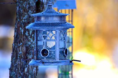 Bird Feeder Lantern Original by Tommytechno Sweden