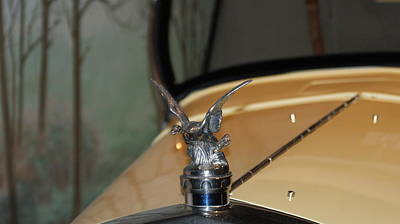 Silver-filled Photograph - Bird Hood Ornament by Rob Luzier