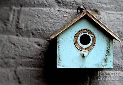 Photograph - Bird House Of Blue By Diana Sainz by Diana Raquel Sainz