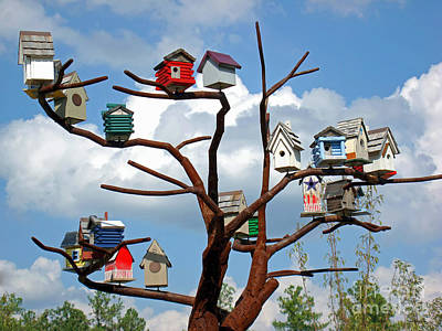 Photograph - Bird House Village by Sue Melvin