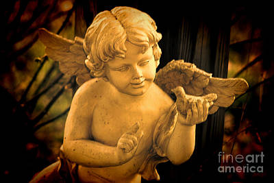 Photograph - The Cherubs Conversation - Hdr by Lesa Fine