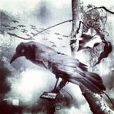 Surrealism Wall Art - Photograph - #bird Looking For #birdbath . #surreal by Lydia Gottardi