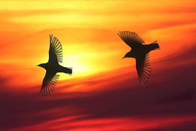 Bird Lovers Art Print