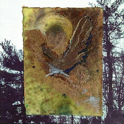 Mixed Media - Bird by Marie Tosto