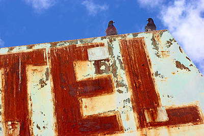 Photograph - Bird Motel by Daniel Woodrum