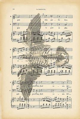 Veterinary Digital Art - Bird Music by Georgia Fowler