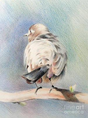 Drawing - Bird by Natalia Eremeyeva Duarte