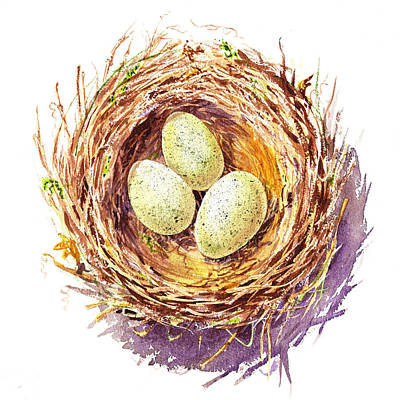 Animals Royalty-Free and Rights-Managed Images - Bird Nest A Happy Trio by Irina Sztukowski