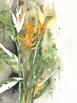 Bird Of Paradise 08 Elena Yakubovich  Art Print