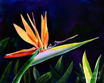 Strelitzia Painting - Bird Of Paradise by AnnaJo Vahle