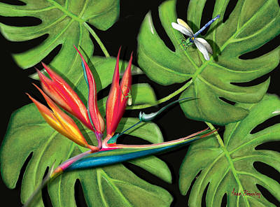 Painting - Bird Of Paradise by Anne Beverley-Stamps
