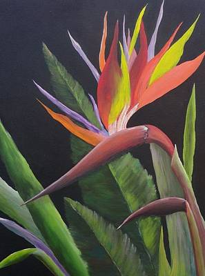 Painting - Bird Of Paradise by Bob Williams