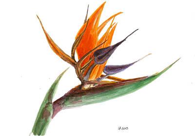 Bird Of Paradise Flower 2 Original by Irina Viatkina