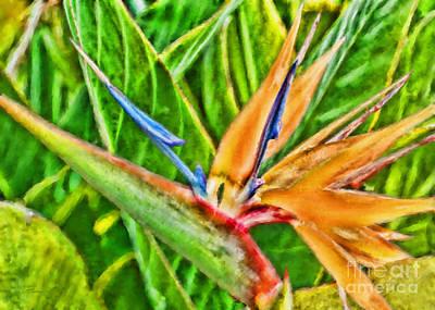 Strelitzia Mixed Media - Bird Of Paradise Flower by Olga Hamilton