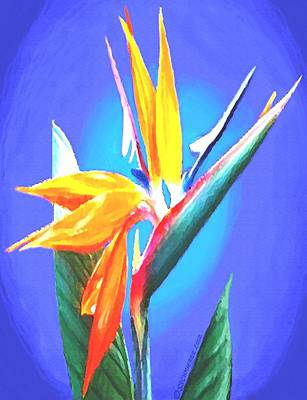 Painting - Bird Of Paradise Flower by Sophia Schmierer