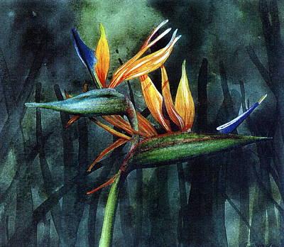 Bird Of Paradise Art Print by John Christopher Bradley